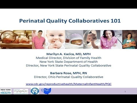 Perinatal Quality Collaboratives 101