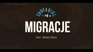 Chonabibe - Migracje (feat. Junior Stress) [Audio]