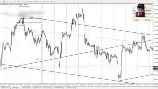 Forex Analysis, 20 - 24 Feb, Main Pairs, Gold