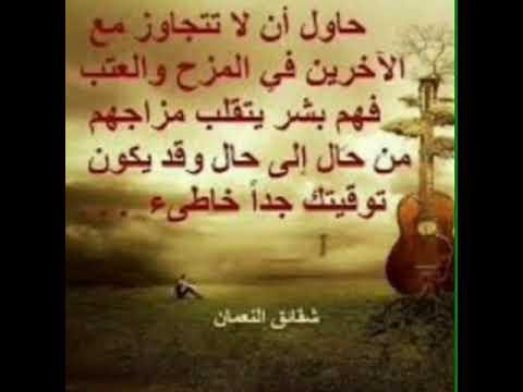 Ihab amir tooop video