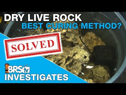 Whats the most effective rock curing method? | BRStv Investigates