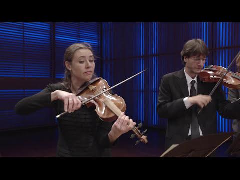 Johann Sebastian Bach - Brandenburg Concerto no. 3 (BWV 1048) - Holland Baroque