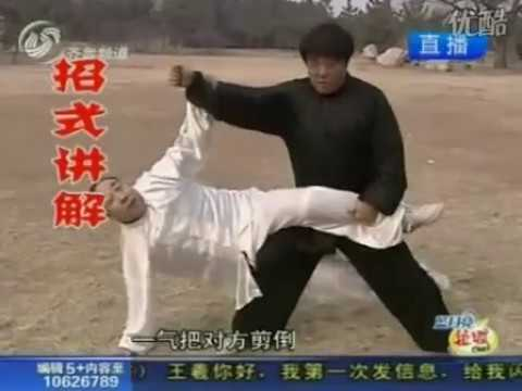 Ground Dragon Classic Boxing of Shandong province