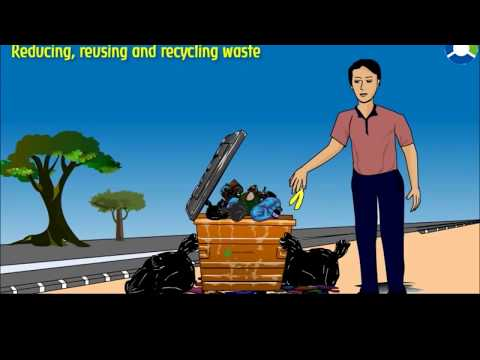 Cleanliness of Surroundings - (CBSE Grade: 4 EVS)