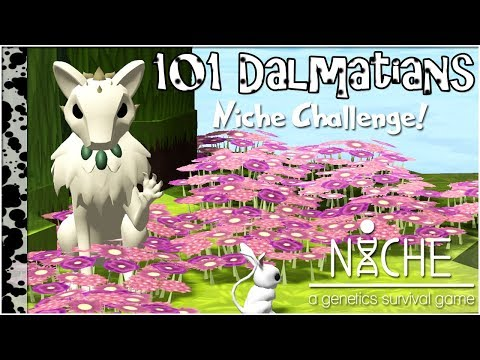 The Start of a Spotty Legacy!! • Niche: 101 Dalmatians Challenge - Episode #1