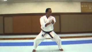 Israel Shotokan Eli Cohen   Tekki Sandan Front view   Fast