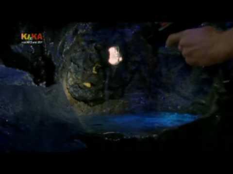 Youtube The Island Saison  Episode