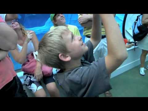 Detroit Zoo - Best Family Attraction - Michigan 2010