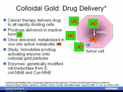 Measuring the Size and Zeta Potential of Colloidal Gold