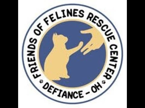 FOFRescueCenter Live Stream ©
