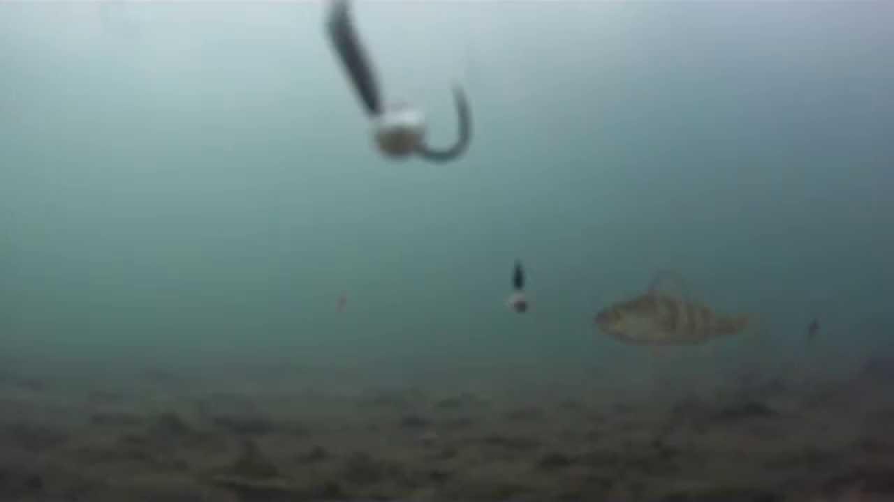 Ice fishing perch lake st clair 2015 gopro hd youtube for Ice fishing lake st clair