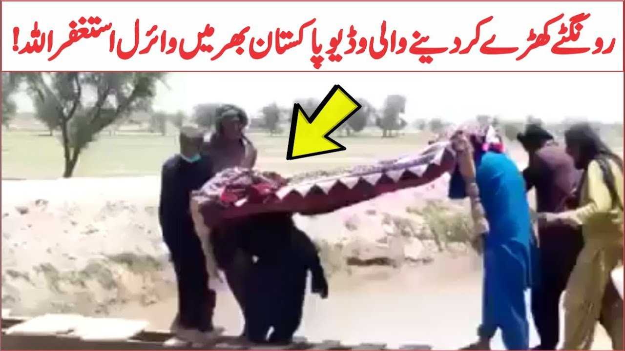 Peoples Party Progressive Work In Province Sindh Viral Video | AR Videos