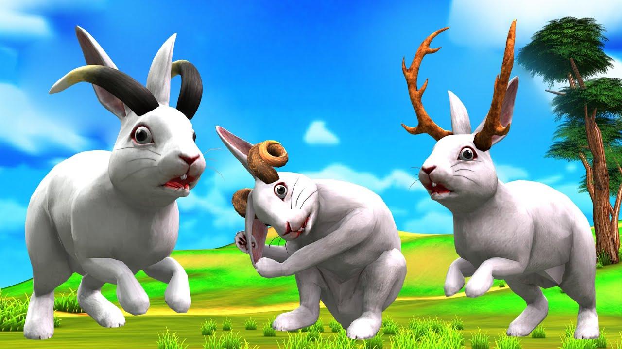तीन खरगोश और बड़े कान Three Rabbits and Big Ears Hindi Kahaniya हिंदी कहानिय Stories in Hindi