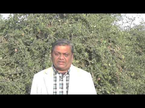 Meen Rashi January 2015 , Vedic Hindi Horoscope ,