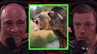 Steve Rinella Details After Effects of Grizzly Bear Encounter