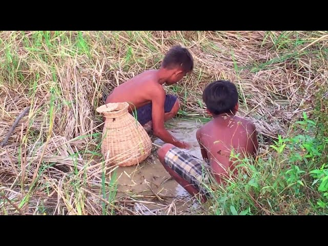 Amazing two boys catch a big snake in hole in dry season