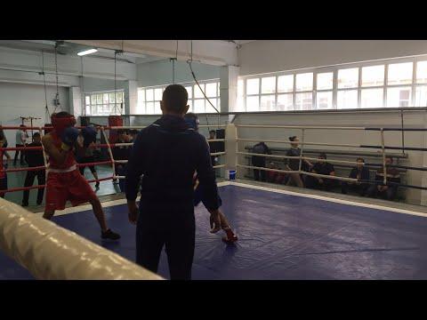 Областной турнир по боксу среди молодёжи