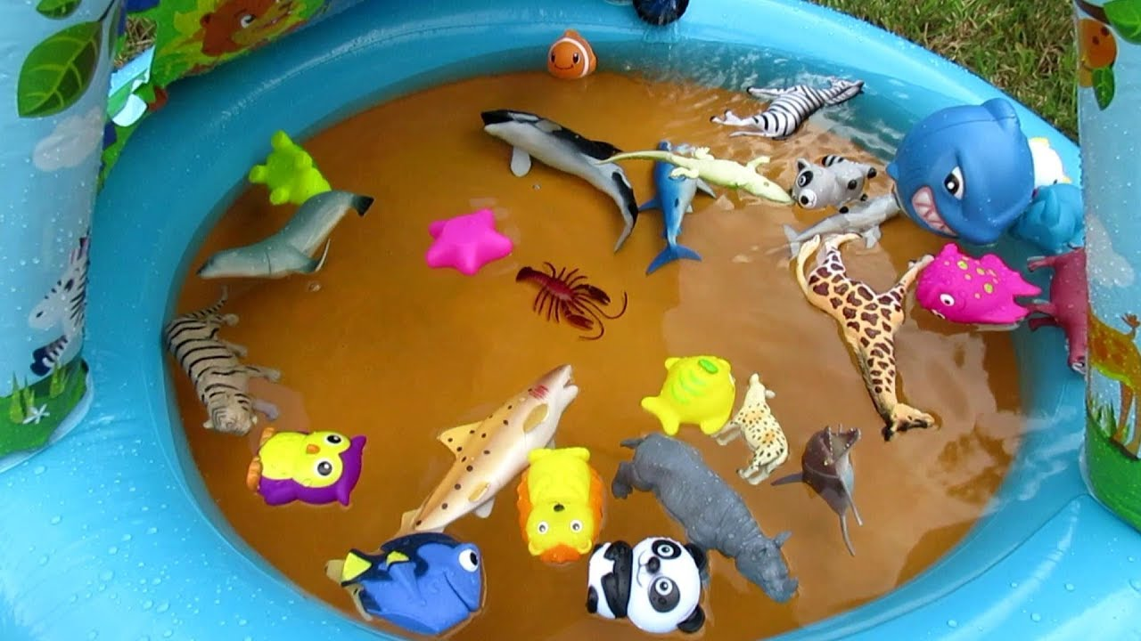 Zoo and Sea Animals Learn Names and Colors for Kids Wild Animals ...