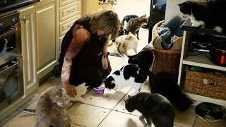 The lady with 80 cats - Cat Wars: Preview - BBC One