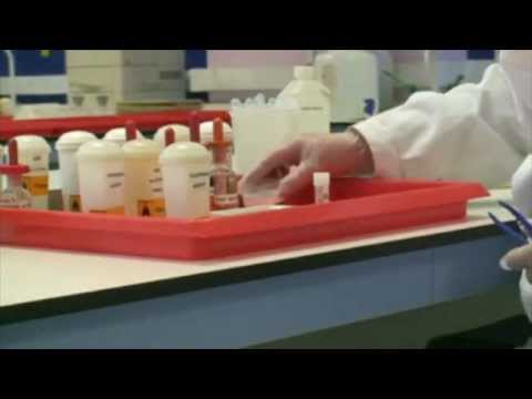 Haematoxylin And Eosin Stain (part 1 Of 3)