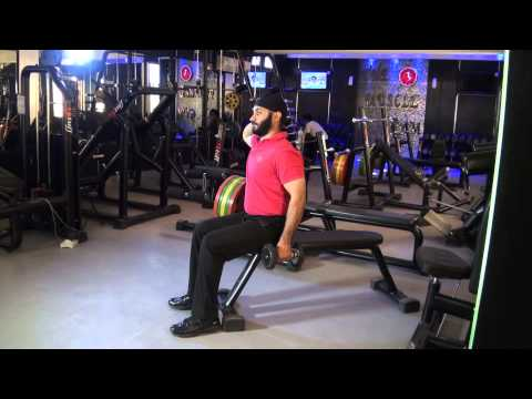ABDOMINALS (OBLIQUES) -  Seated Side Bends (Single Dumbbell)