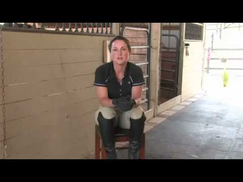 Show Hunters & Fox Hunting In Horse Riding