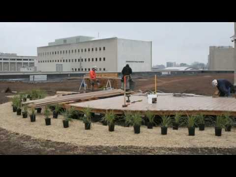 Milwaukee Public LIbrary Green Roof