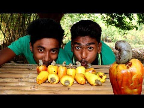 Farm Fresh Ras Badam (Kajshew Nut) Makha Recipe by village boys | Village Food