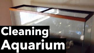 Cleaning An Old Aquarium With Vinegar & Razorblade
