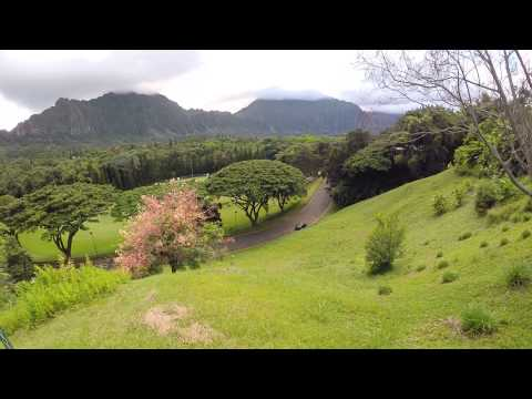 Hawaii Loa Campus