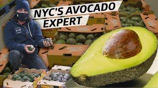 How 'the Avocado Guy' oḟ NYC Supplies Michelin-Starred Restaurants — Vendors
