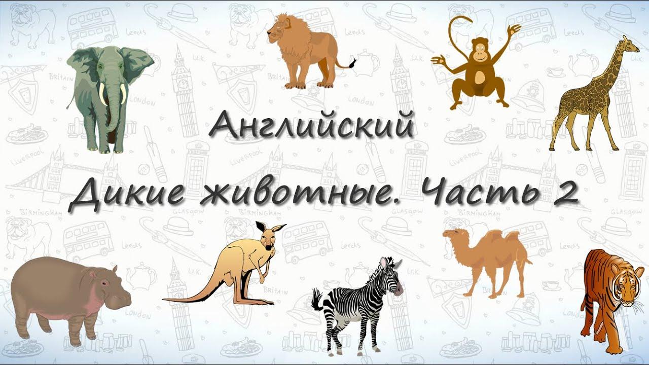 Лось (описание животного для детей) ДоклаДики
