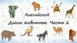Животные на английском. Дикие Животные. Часть 2