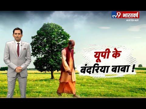 Uttar Pradesh के Bahraich में पेड़ पर रहते हैं बंदरिया बाबा, देखिए अजब बाबा की गजब कहानी