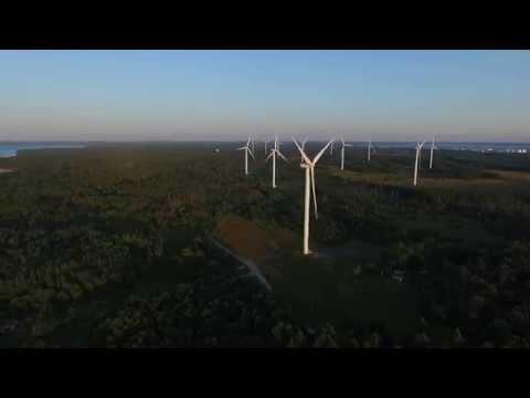 Pakri poolsaar ja tuulepark