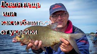 Рыбалка 2020. Ловля леща или как избавиться от уклейки.Рыбалка весной.