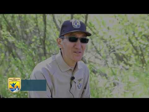 Alaska Natives and Fish and Wildlife Service