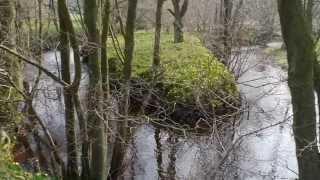 Rudland Rigg & Farndale, a North York Moors Walk