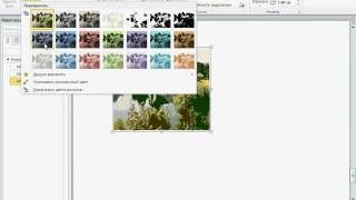 Изменение прозрачности цвета в Word 2010 (21/50)