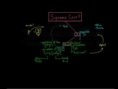 10. Circuit Court (Appellate Court)