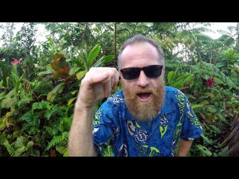 Ancient Hawaiian Bushcraft