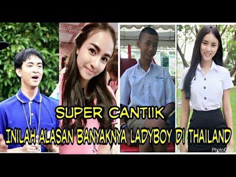 ladyboy di thailand