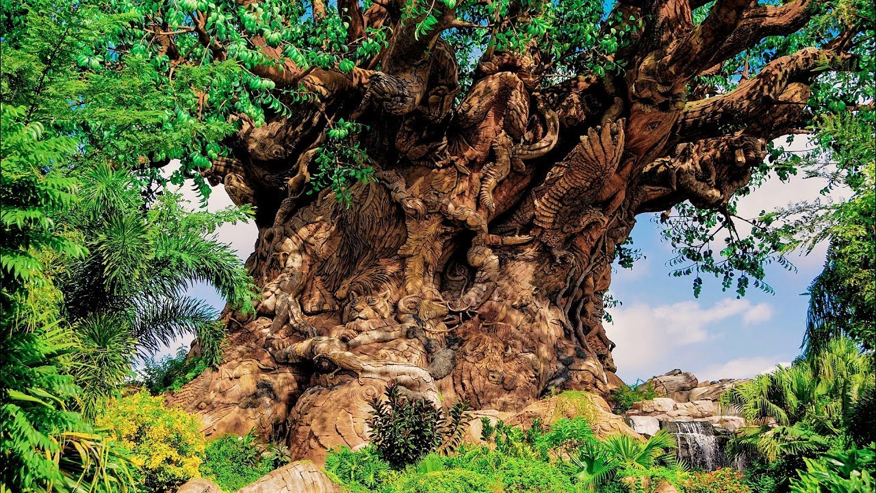 The Tree Of Life Online