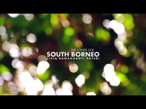 The Other Side: South Borneo