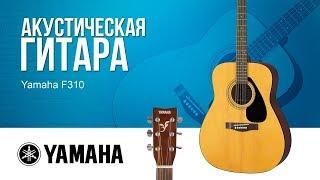 yamaha F310 - обзор акустической гитары
