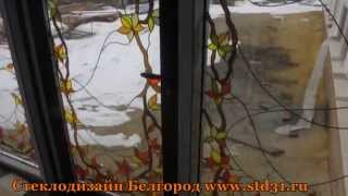 Домашний зимний сад с витражами. Белгород.