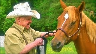 Video LOST STALLIONS:  THE JOURNEY HOME - starring Mickey Rooney - Official Trailer download MP3, 3GP, MP4, WEBM, AVI, FLV Oktober 2017