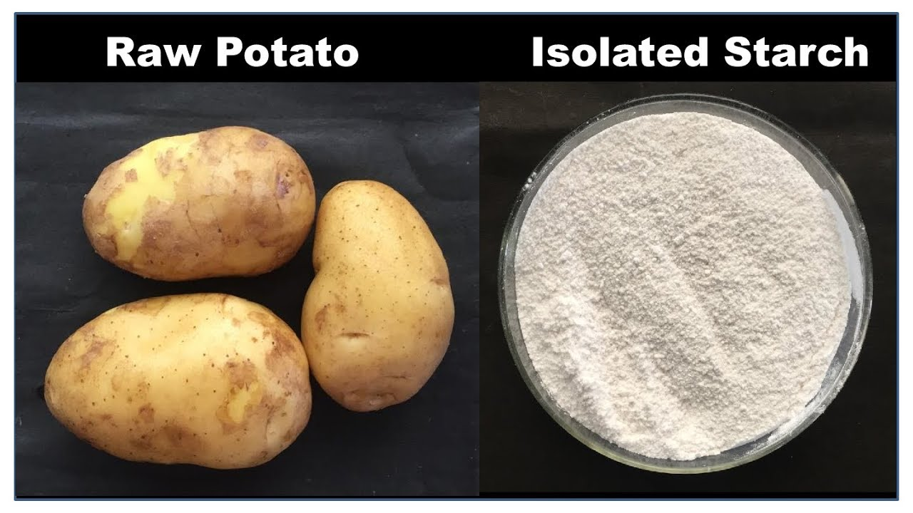 Isolation of Starch from Potato = Simplest Pharmacy Practical (HINDI) By  Solution Pharmacy - YouTube