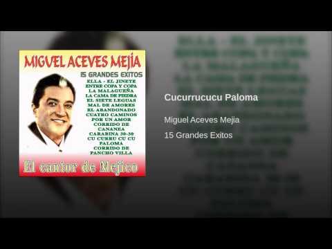 Miguel Aceves Mejía Topic