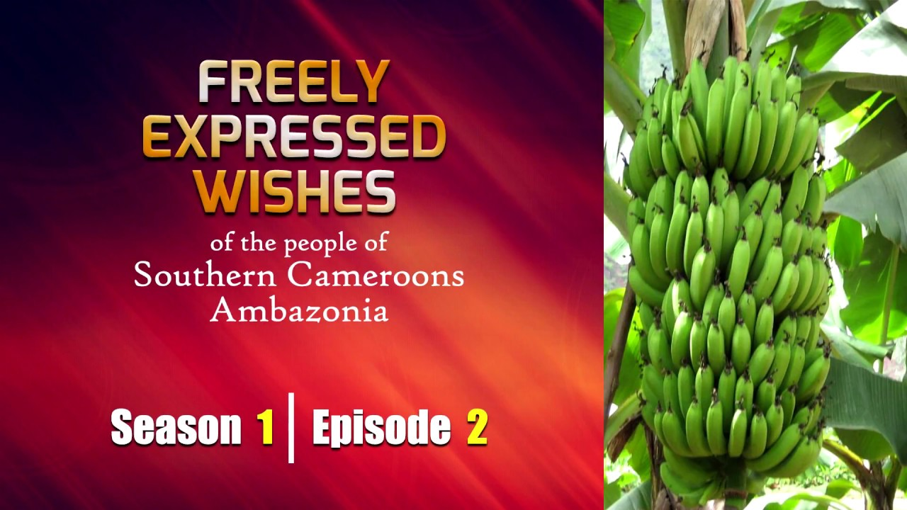 S1: E2 - Freely Expressed Wishes of the people of Southern Cameroons / Ambazonia